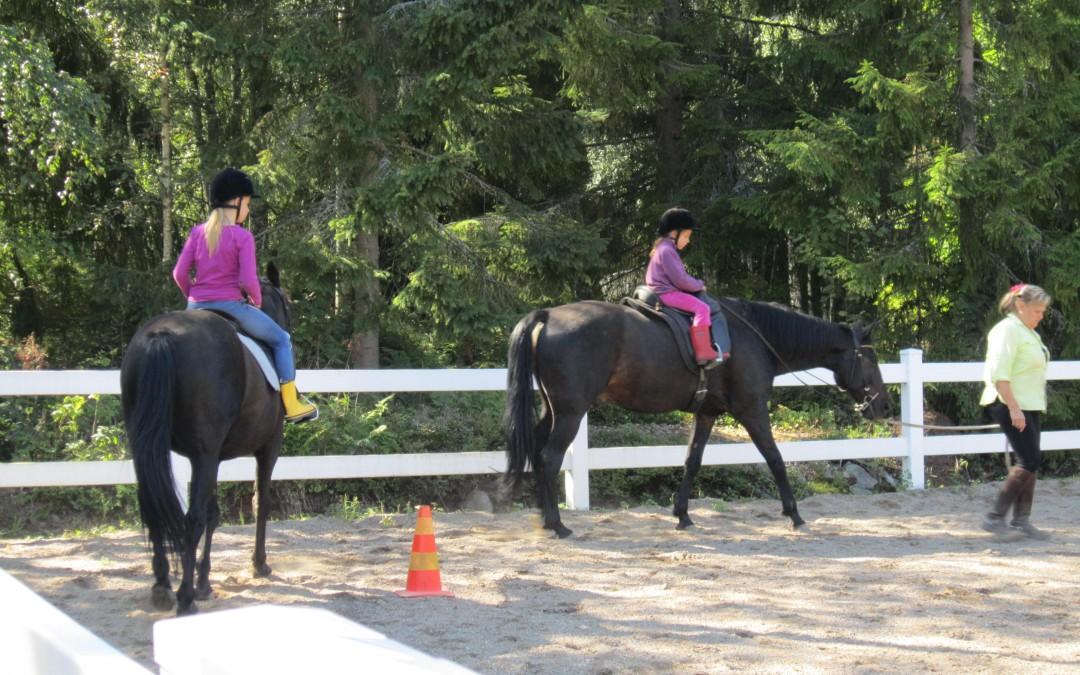 hästgård 3